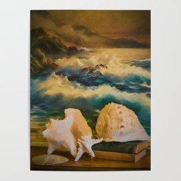 Sea Shell Still Life Poster