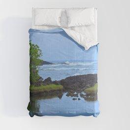 HIdden Treasures Comforters