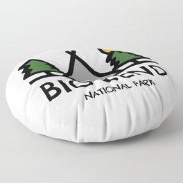 Big Bend National Park Floor Pillow