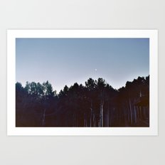 Little Moon Art Print