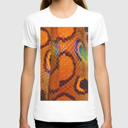 Rainbow Boa T-shirt