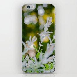 White Oleander Bokeh iPhone Skin