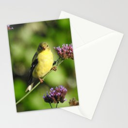 Goldfinch in the Garden Stationery Cards