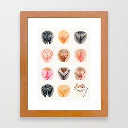 Vulva Diversity #1 Framed Art Print