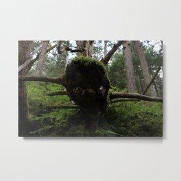 When the Mighty(tree) Has Fallen Metal Print