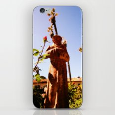 Lookin Up iPhone & iPod Skin