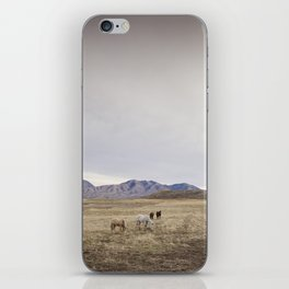 Minimalistic Westen Landscape iPhone Skin