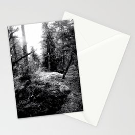 Fall Forest Morning Stationery Cards