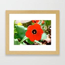 Red Portal Framed Art Print