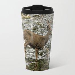 Young Buck Crossing The River Travel Mug