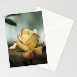 Yellow and Red Mid City Rose  Stationery Cards
