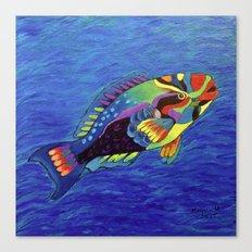 Rainbow parrot fish Canvas Print