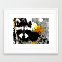 racoon Framed Art Prints featuring Racoon by oji daimler