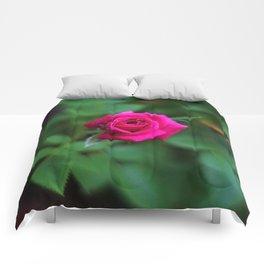 Tiny Pink Rose Comforters