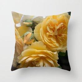 Graham Thomas old fashioned rose Throw Pillow