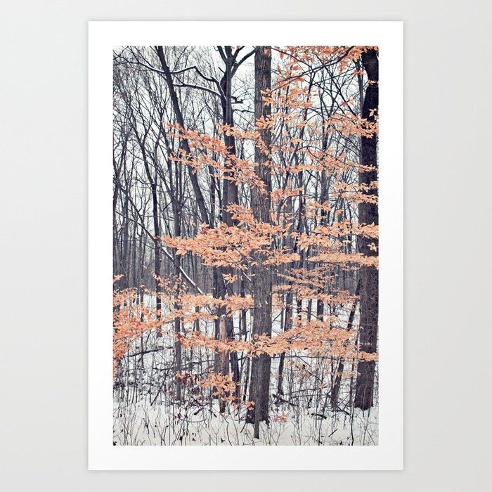 Snow in the Woods Art Print
