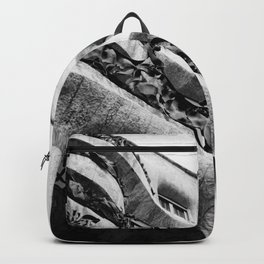 La Pedrera Backpack