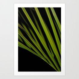 PlantArt1 Art Print
