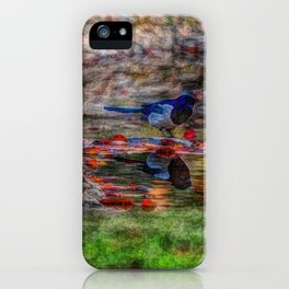 Curiosity iPhone Case