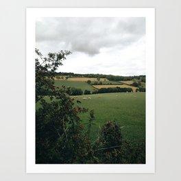 England rural landscape Art Print