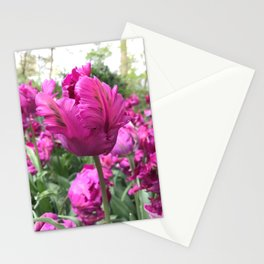 Double Purple Parrot Tulip II Stationery Cards