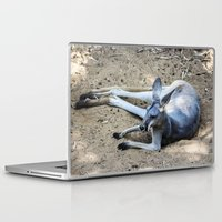kangaroo Laptop & iPad Skins featuring Kangaroo by Veronika