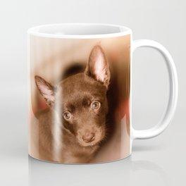 Puppy- Australian Kelpie Coffee Mug