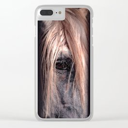 Jail Clear iPhone Case