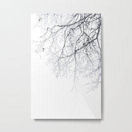 BLACK BRANCHES Metal Print