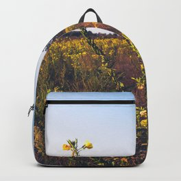 Uncultivated field in the Lomellina countryside at sunset full of yellow flowers Backpack