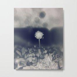 Film Negative Metal Print