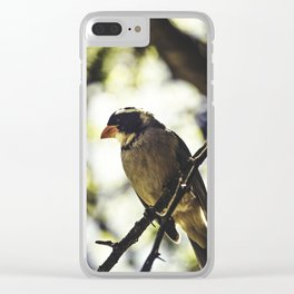 TheBird Clear iPhone Case