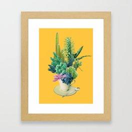 Arid garden Framed Art Print