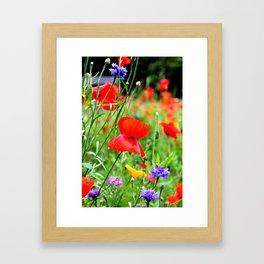 wild poppies Framed Art Print