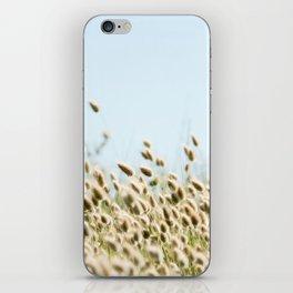 Summer beach land iPhone Skin