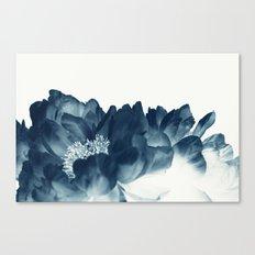Blue Paeonia #1 Canvas Print