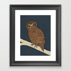 Boobook Owl Framed Art Print