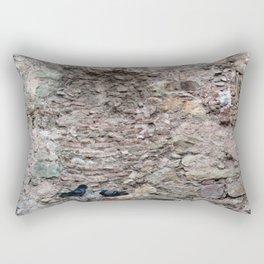 El origen de un encuentro Rectangular Pillow