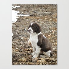 Baby Freckles Canvas Print