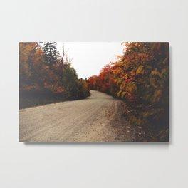 510//Fall Metal Print