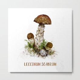 Leccinum Scabrum Metal Print