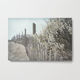 Vintage Inspired Sand Fence and White Flowers at the Beach with Blue Sky Metal Print