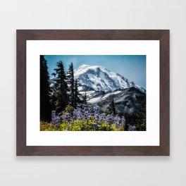 Scenic Art, Mt. Rainier, Mt. Rainier National Park, Spray Park Framed Art Print