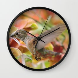 Little Ms. Hummingbird in for More Licks Wall Clock