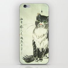 enlightment iPhone & iPod Skin