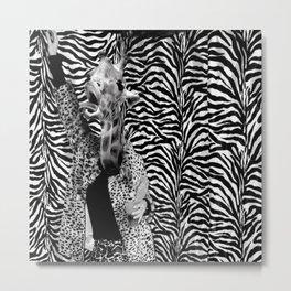 Crazy Giraffe Metal Print