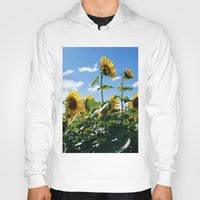 sunflowers Hoodies featuring Sunflowers by Falko Follert Art-FF77