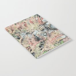 Colored ferns. Notebook