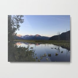 Alaska Bog Metal Print