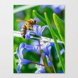 BeesWork Canvas Print
